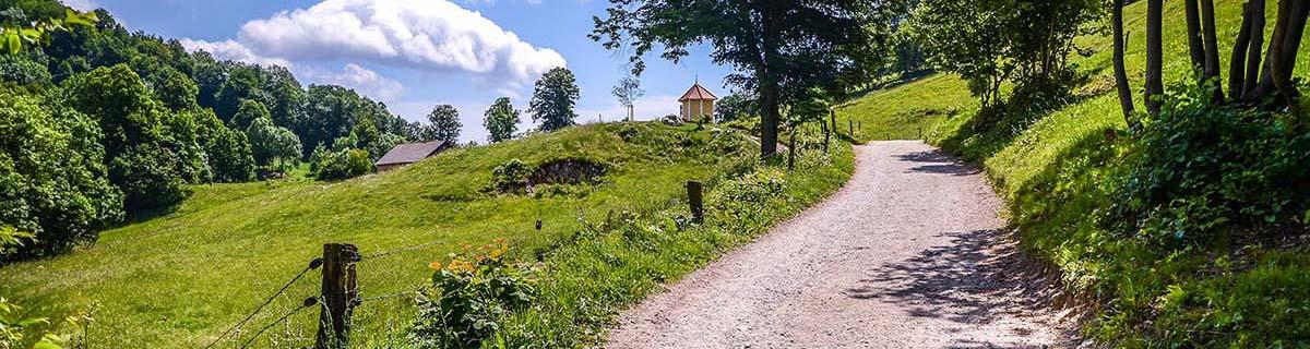 Fotografija makedamske ceste na Šmarno goro